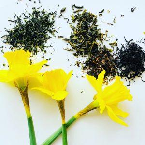 Tea and daffodils